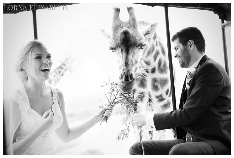 Port Lympne Weddings: Wedding & Safari pictures- Amy & Nick